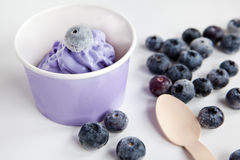Frozen creamy ice yoghurt  with whole blueberries Stock Photo
