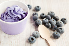 Frozen creamy ice yoghurt  with whole blueberries Stock Photos