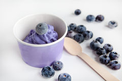 Frozen creamy ice yoghurt  with whole blueberries Stock Images