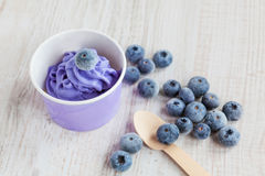 Frozen creamy ice yoghurt  with whole blueberries Stock Photography