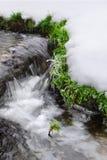 Frozen creek. Beautiful natural spring background Stock Photo