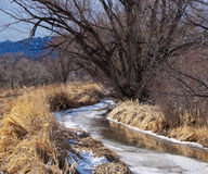 Free Frozen Creek Begins To Thaw Royalty Free Stock Photos - 12908308