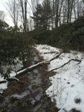 Frozen creek Stock Photo