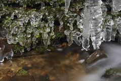 Frozen creek and icicles Royalty Free Stock Image