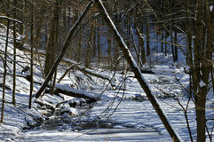 Frozen Creek Royalty Free Stock Images