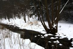 Frozen creek. Royalty Free Stock Photos