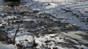 Frozen Creek with sound stock video