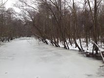 Frozen Creek. Taken from bridge on country road Royalty Free Stock Photos