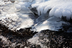 Frozen creek Stock Photography