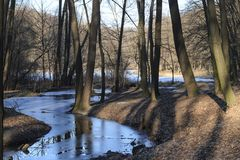 Frozen creek in a winter forest royalty free stock image