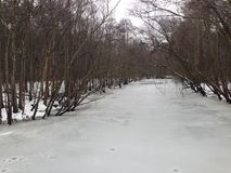 Frozen Creek. Winter time creek bed frozen over Royalty Free Stock Images