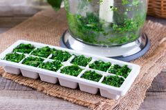 Frozen cubes of herbs. On a wooden table stock image