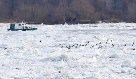 Frozen Danube river in Belgrade, Serbia Stock Photo