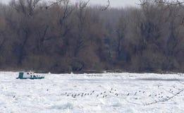 Frozen Danube river in Belgrade, Serbia Stock Images