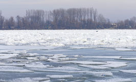 Frozen Danube river in Belgrade, Serbia Royalty Free Stock Photos