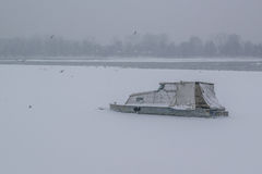 Frozen Danube river with captured boats and seagulls Royalty Free Stock Images