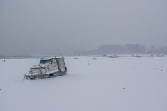 Frozen Danube river with captured boats and seagulls Royalty Free Stock Photos