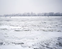 Frozen Danube River Royalty Free Stock Photography