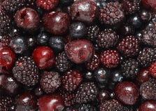 Frozen dark fruits Royalty Free Stock Image