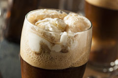Frozen Dark Stout Beer Float. With Ice Cream Royalty Free Stock Image