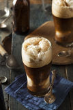 Frozen Dark Stout Beer Float Stock Photography