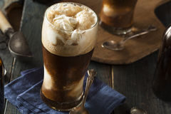Frozen Dark Stout Beer Float Stock Images