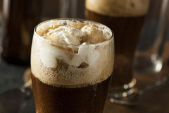 Frozen Dark Stout Beer Float Royalty Free Stock Photography
