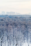 Frozen dawn over city park in winter Stock Photography