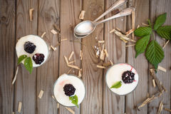 Frozen dessert with blackberry, yogurt and oat flakes. Healthy breakfast royalty free stock images