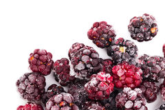 Frozen dewberries isolared on white background. Shallow depth of Royalty Free Stock Images