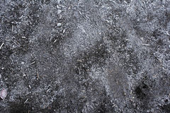 Frozen Dirt. Frosty ground that has some wood mulch in it on a cold morning in autumn Royalty Free Stock Photo