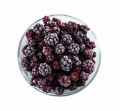Frozen domestic wild blackberries - isolated on white background Royalty Free Stock Photos