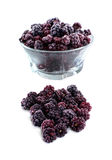 Frozen domestic wild blackberries - isolated on white background Stock Images