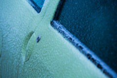 Frozen door of the car Royalty Free Stock Images