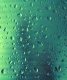 Frozen drops. Stock Images