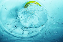 Frozen drops of water in a bizarre Royalty Free Stock Image