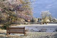 A frozen duck pond in an English village with a bench in the foreground. On a cold frosty winters day. Hanley Swan, Worcestershire royalty free stock photos