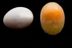 Frozen egg Royalty Free Stock Photos
