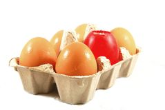 Frozen eggs Royalty Free Stock Photography