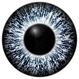 Frozen eye texture 3d blue and black eye, black fringe. And lines Royalty Free Stock Images
