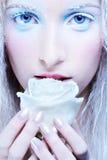 Frozen fairy Stock Image