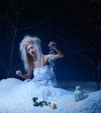Frozen fairy Stock Photography