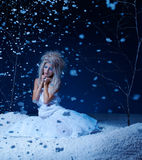 Frozen fairy Royalty Free Stock Photos
