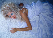 Frozen fairy Royalty Free Stock Images