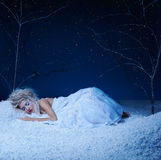Frozen fairy Stock Images