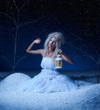 Frozen fairy Stock Photography
