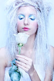 Frozen fairy Royalty Free Stock Photography