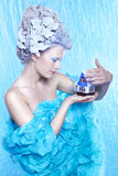 Frozen fairy with toyhouse Royalty Free Stock Photography