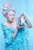 Frozen fairy with toyhouse Royalty Free Stock Photos
