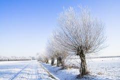Frozen farmland Royalty Free Stock Photo